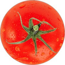 магнит помидор