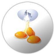 значок яйца